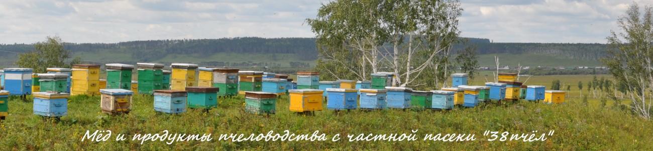 купить мёд с частной пасеки в Иркутске
